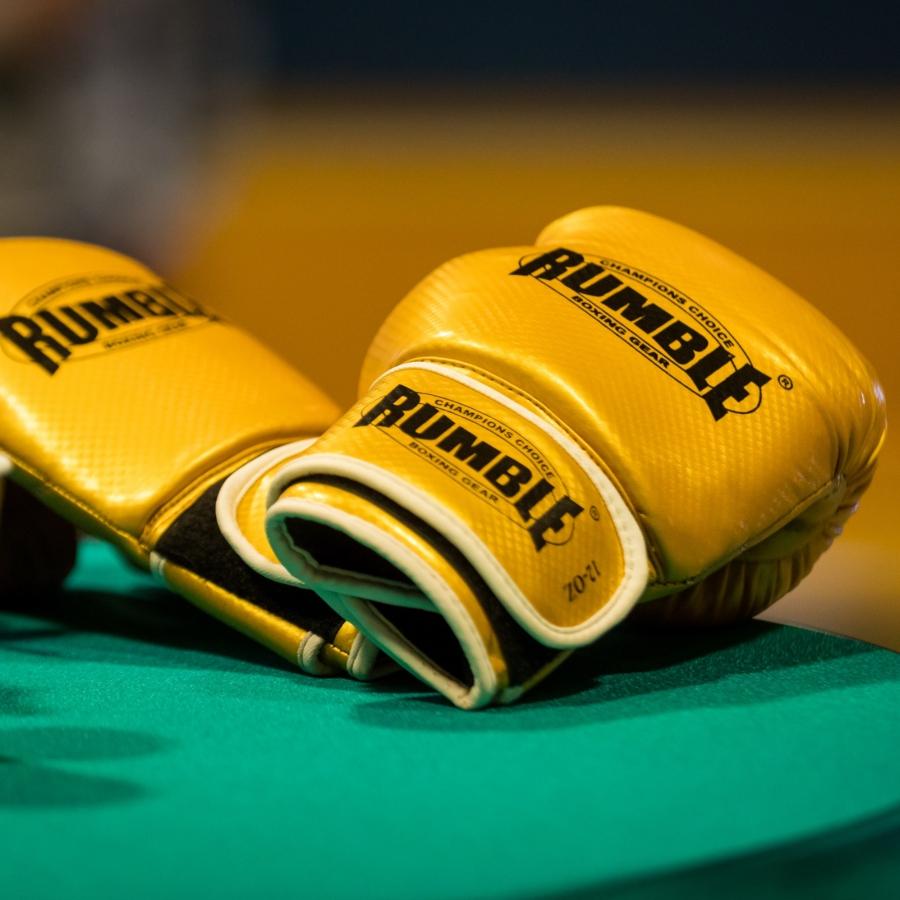 Gouden Bokshandschoen